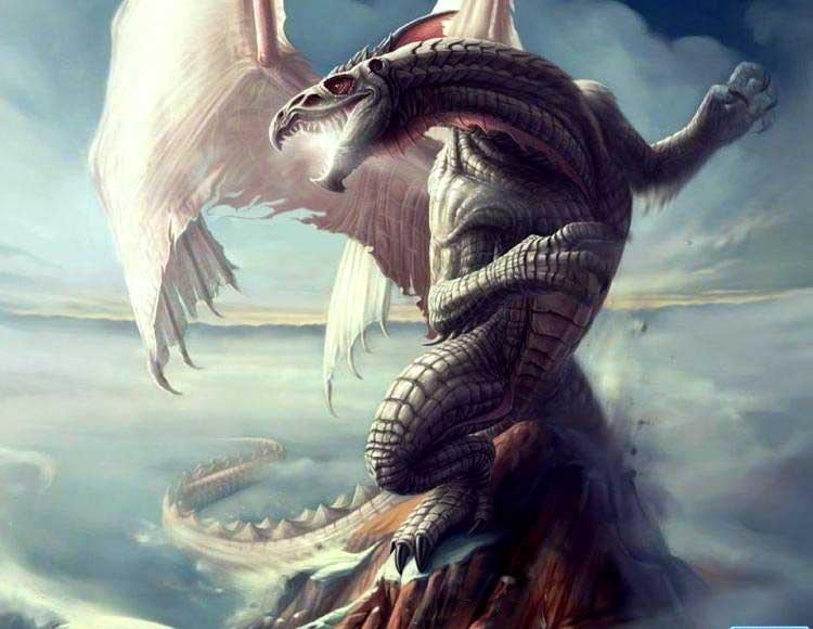 whitedragon2